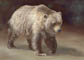 Alaskan Brown Bear Pastel